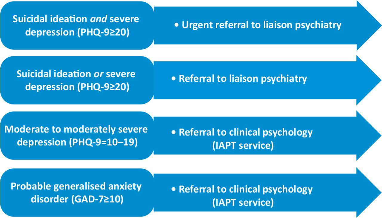 Integrating Mental And Physical Health Assessment In A Neuro Otology Clinic Feasibility Acceptability Associations And Prevalence Of Common Mental Health Disorders Rcp Journals